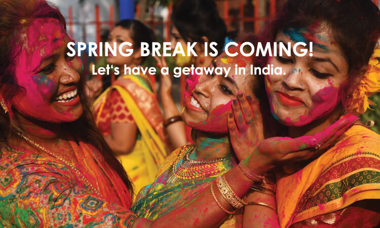 Great festivals in India, great Deal for e-Visa!